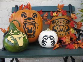 Halloween Painted Pumpkins from www.all-about-stencils.com